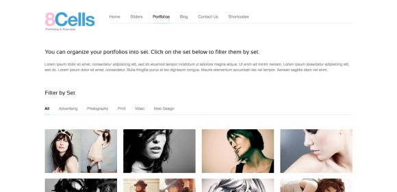 20 Best WordPress Gallery Themes