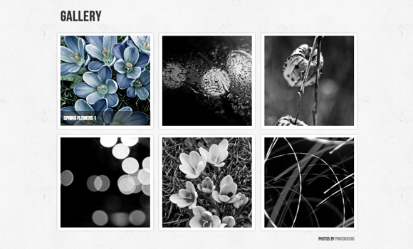 Create your portfolio gallery using html5 canvas