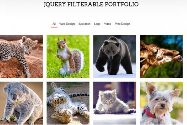25 Best Tutorials for Building a Custom Portfolio Website